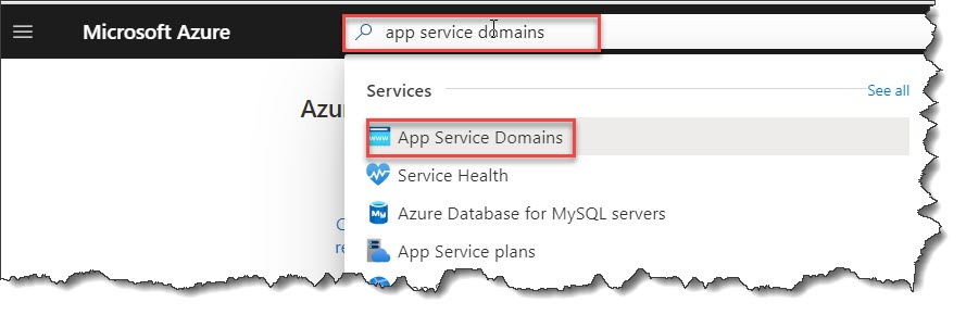 Azure Domain name service